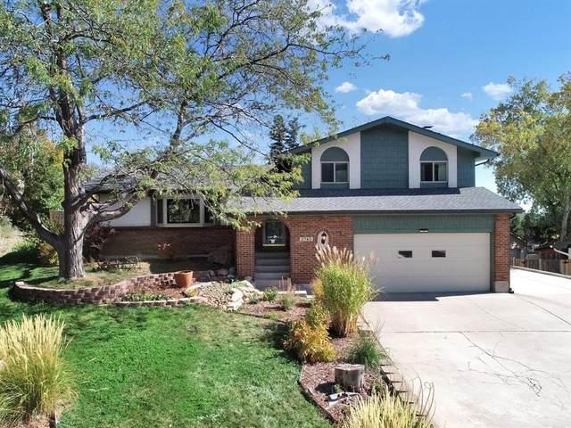 2745 Cibola Drive, Colorado Springs, CO 80917 (#5674833) :: Venterra Real Estate LLC