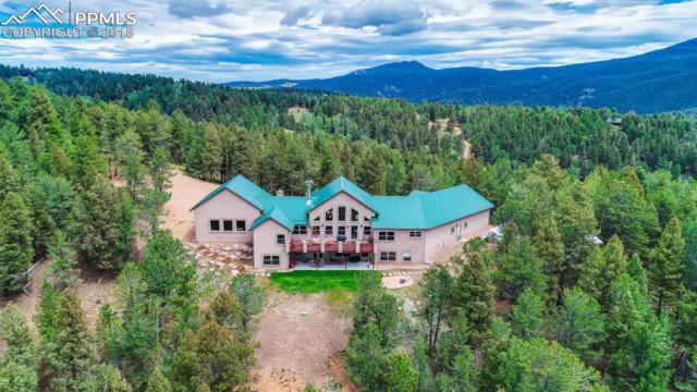252 Running Elk Point, Divide, CO 80814 (#5677917) :: Venterra Real Estate LLC