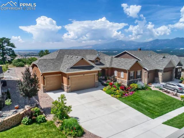 849 Black Arrow Drive, Colorado Springs, CO 80921 (#5678925) :: The Treasure Davis Team