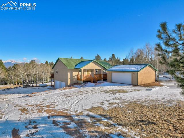 130 Panorama Drive, Florissant, CO 80816 (#5679523) :: 8z Real Estate