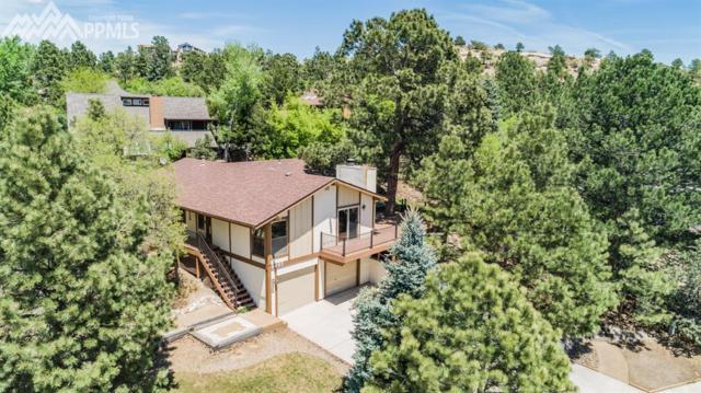 6995 Winter Hawk Circle, Colorado Springs, CO 80919 (#5684451) :: 8z Real Estate
