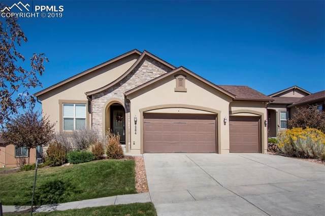 6264 Mount Ouray Drive, Colorado Springs, CO 80924 (#5685712) :: 8z Real Estate