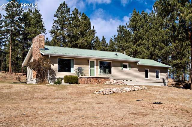 2197 County 46 Road, Florissant, CO 80816 (#5686729) :: The Peak Properties Group