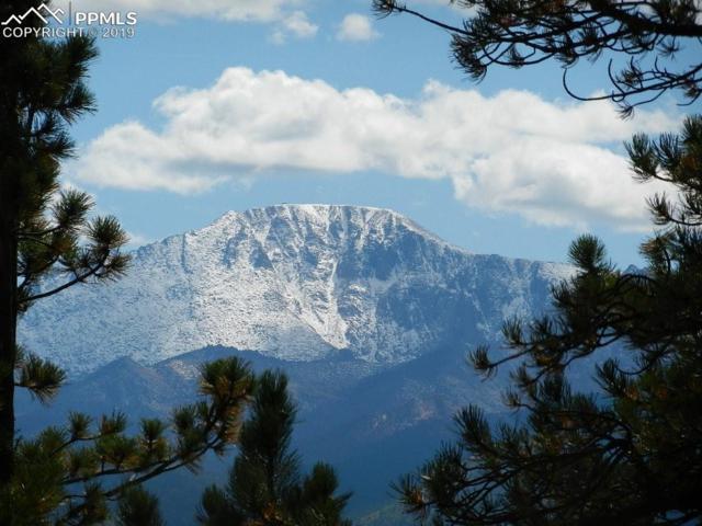 300 E Thunder Ridge Drive, Woodland Park, CO 80863 (#5697152) :: The Peak Properties Group