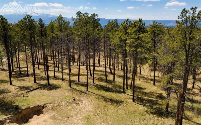 14290 Holmes Road, Colorado Springs, CO 80908 (#5700645) :: 8z Real Estate