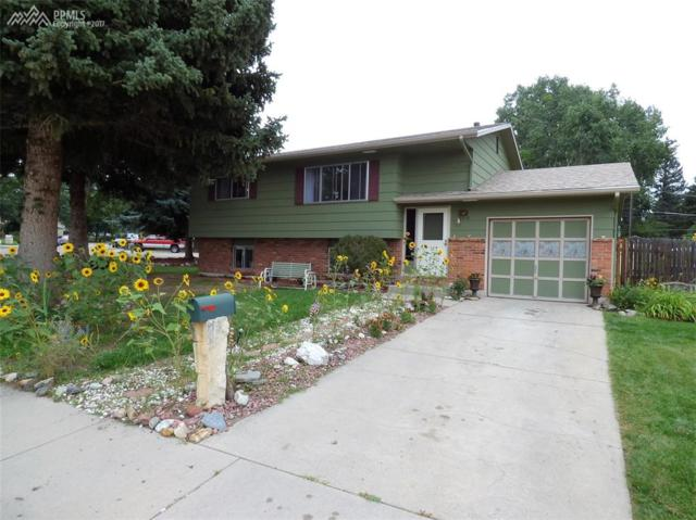 4219 Driftwood Drive, Colorado Springs, CO 80918 (#5703284) :: RE/MAX Advantage