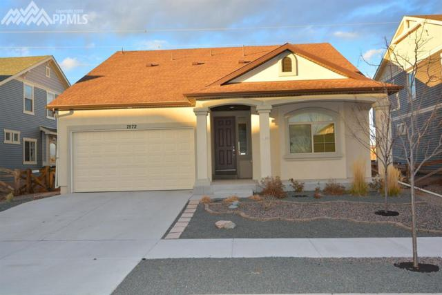 7572 Mountain Spruce Drive, Colorado Springs, CO 80927 (#5704389) :: The Peak Properties Group