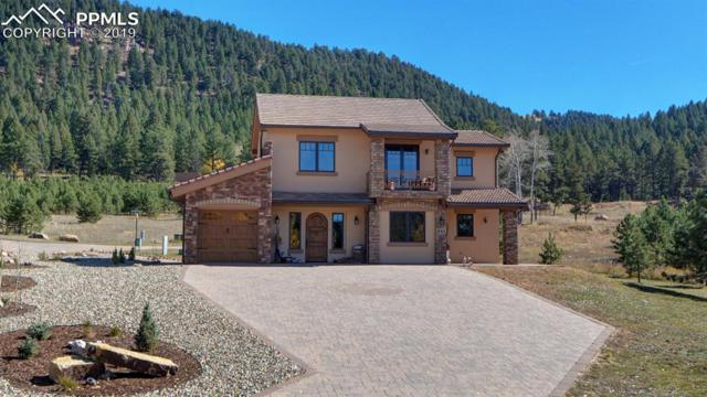 841 Majestic Parkway, Woodland Park, CO 80863 (#5705338) :: The Peak Properties Group