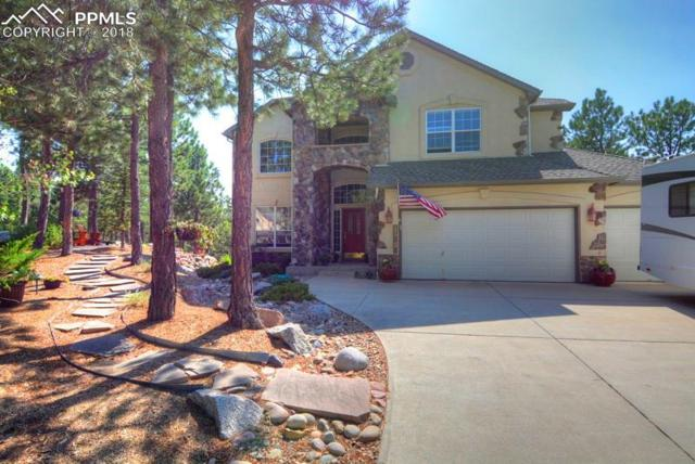 15936 Backwoods Court, Colorado Springs, CO 80921 (#5706789) :: CENTURY 21 Curbow Realty