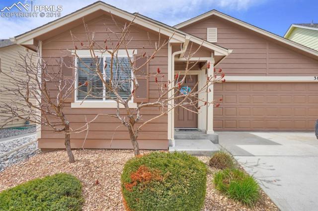 3840 Falconry Drive, Colorado Springs, CO 80922 (#5707562) :: The Treasure Davis Team