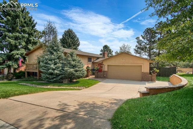 2759 Rigel Drive, Colorado Springs, CO 80906 (#5719424) :: The Treasure Davis Team