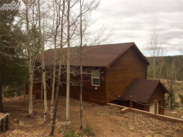 25 Blue Mesa Terrace, Divide, CO 80814 (#5720503) :: The Peak Properties Group