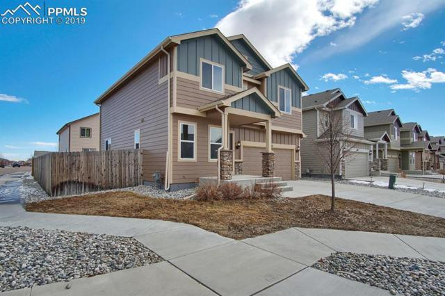 6113 Wood Bison Trail, Colorado Springs, CO 80925 (#5722352) :: CC Signature Group