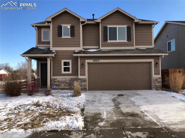4063 Silver Star Grove, Colorado Springs, CO 80911 (#5723373) :: 8z Real Estate