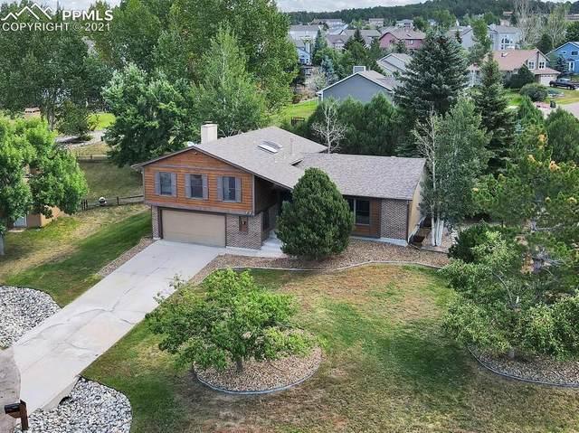 15215 Diamondhead Court, Colorado Springs, CO 80921 (#5727287) :: Action Team Realty