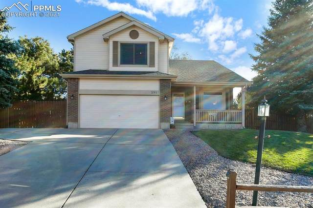 291 Candletree Circle, Monument, CO 80132 (#5728662) :: The Kibler Group