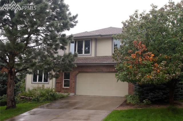 6650 Sky Hawk Court, Colorado Springs, CO 80919 (#5729353) :: 8z Real Estate