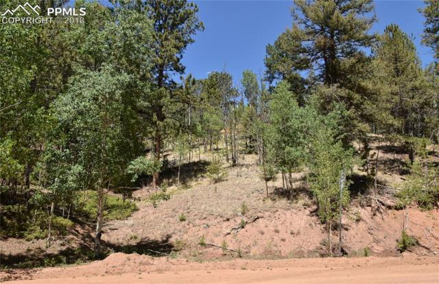 16 Horseshoe Drive, Divide, CO 80814 (#5731950) :: Action Team Realty