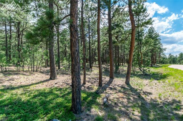 19084 Hilltop Pines Path, Monument, CO 80132 (#5732077) :: Action Team Realty