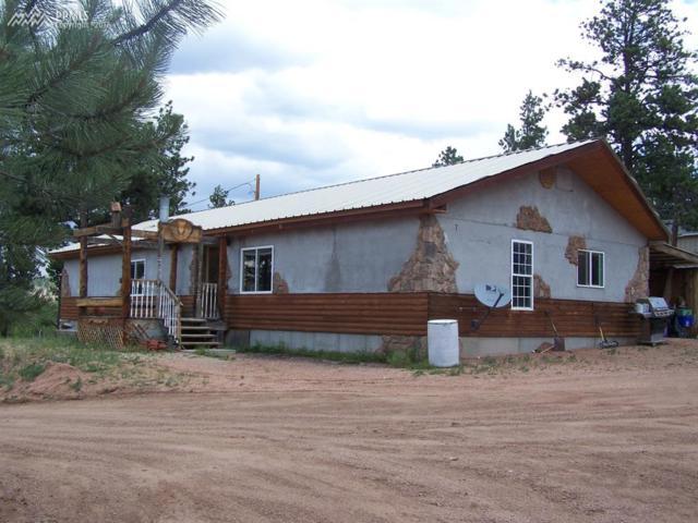 38 Paint Brush Drive, Florissant, CO 80816 (#5741615) :: 8z Real Estate