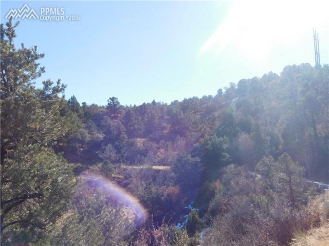 TBD Puma Path, Manitou Springs, CO 80829 (#5743569) :: 8z Real Estate