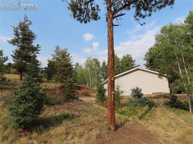 2270 Pikes Peak Drive, Florissant, CO 80816 (#5744447) :: Tommy Daly Home Team