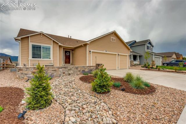 1108 Night Blue Circle, Monument, CO 80132 (#5744576) :: Tommy Daly Home Team