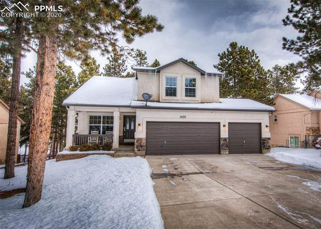 1430 Evergreen Heights Drive, Woodland Park, CO 80863 (#5748680) :: Colorado Home Finder Realty