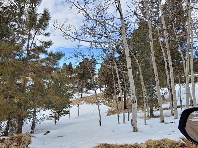 25 Lost Park Circle, Florissant, CO 80816 (#5750490) :: Action Team Realty