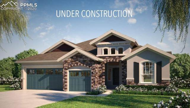 615 High Lonesome View, Colorado Springs, CO 80906 (#5750513) :: CC Signature Group