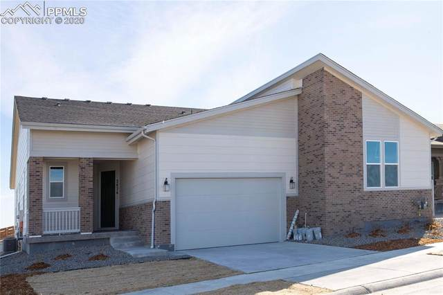 2026 Sagerock Drive, Castle Pines, CO 80108 (#5753339) :: Tommy Daly Home Team