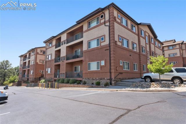 3765 Hartsock Lane #205, Colorado Springs, CO 80917 (#5758147) :: Jason Daniels & Associates at RE/MAX Millennium