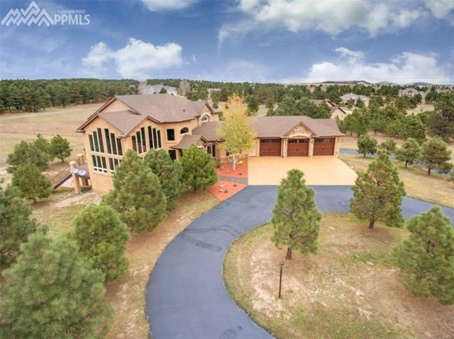 18966 Pagentry Place, Monument, CO 80132 (#5761778) :: The Peak Properties Group