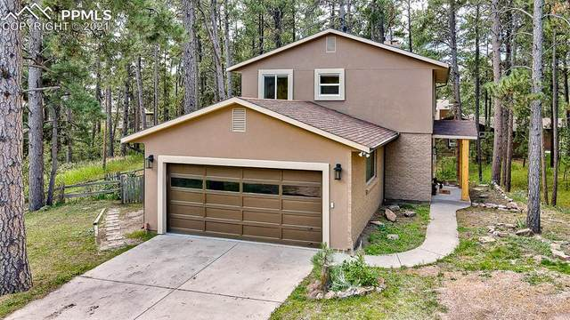 19435 Misty Morning Drive, Monument, CO 80132 (#5762027) :: Tommy Daly Home Team