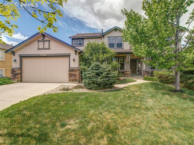 2937 Wild Cherry Lane, Colorado Springs, CO 80920 (#5763190) :: The Daniels Team