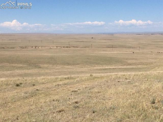 County 169 Road, Matheson, CO 80830 (#5769824) :: The Daniels Team