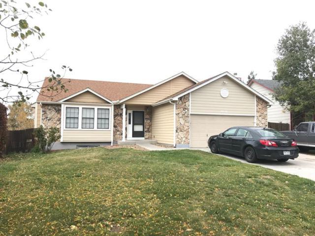 6630 Holt Drive, Colorado Springs, CO 80922 (#5770322) :: 8z Real Estate