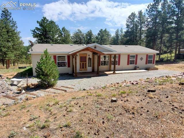 434 Blue Mountain Drive, Florissant, CO 80816 (#5774807) :: Venterra Real Estate LLC