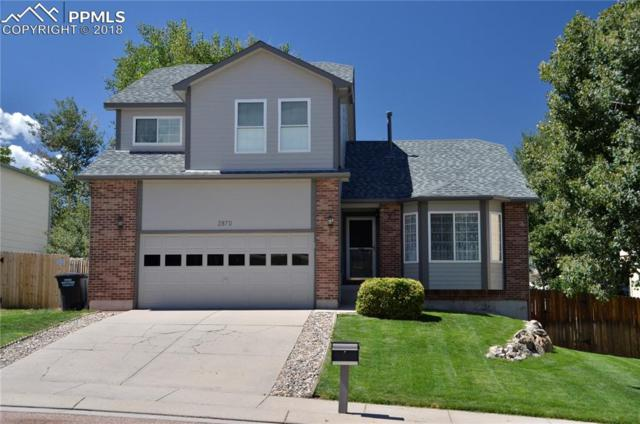 2870 Warrenton Way, Colorado Springs, CO 80922 (#5776272) :: The Treasure Davis Team