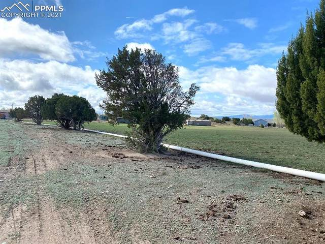 0 Broadway, Penrose, CO 81240 (#5778314) :: Tommy Daly Home Team