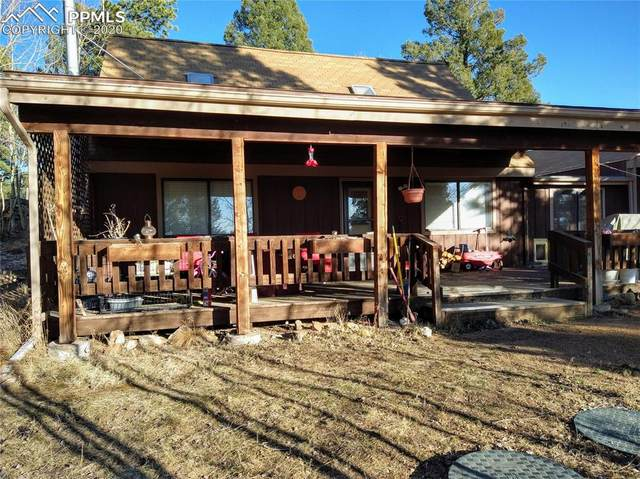 551 Cottonwood Lake Drive, Divide, CO 80814 (#5779842) :: Action Team Realty