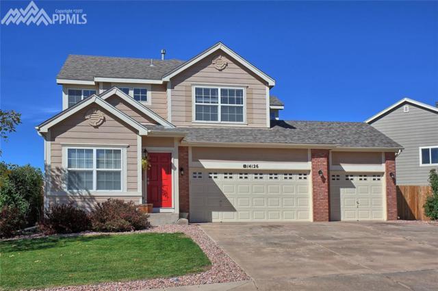 14126 Petrel Drive, Colorado Springs, CO 80921 (#5781113) :: The Treasure Davis Team