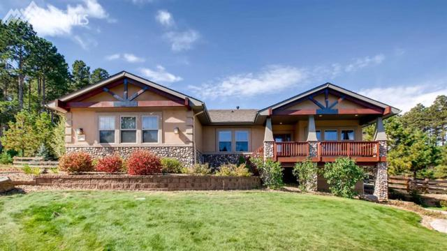 1093 Greenland Forest Drive, Monument, CO 80132 (#5785179) :: 8z Real Estate