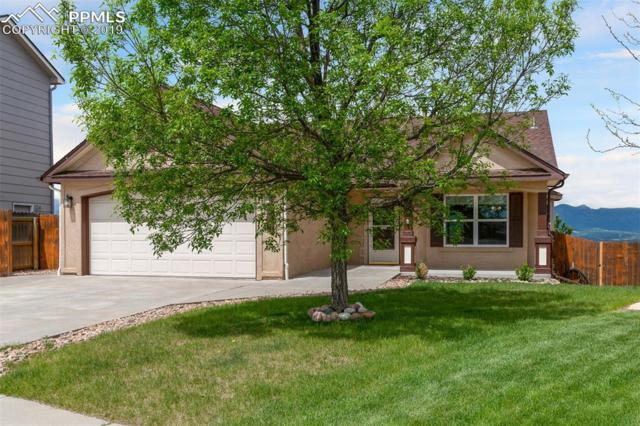 4151 Bays Water Drive, Colorado Springs, CO 80920 (#5786121) :: Tommy Daly Home Team