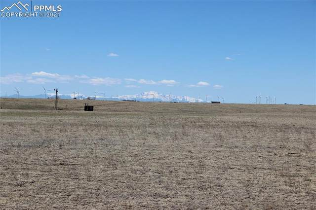 9750 Berridge Road, Calhan, CO 80808 (#5789839) :: The Kibler Group