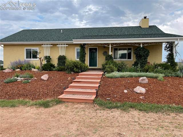 6555 Echo Ridge Heights, Colorado Springs, CO 80908 (#5793328) :: Tommy Daly Home Team