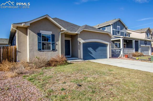 6662 Stingray Lane, Colorado Springs, CO 80925 (#5797241) :: Harling Real Estate