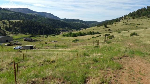 Colorado Avenue, Cripple Creek, CO 80813 (#5798649) :: The Hunstiger Team