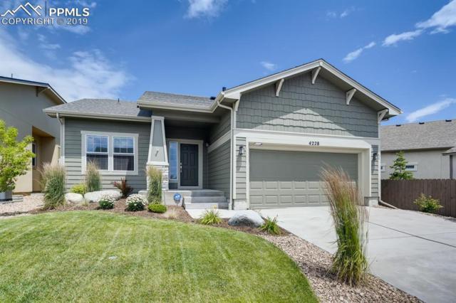 4228 Notch Trail, Colorado Springs, CO 80924 (#5800154) :: 8z Real Estate