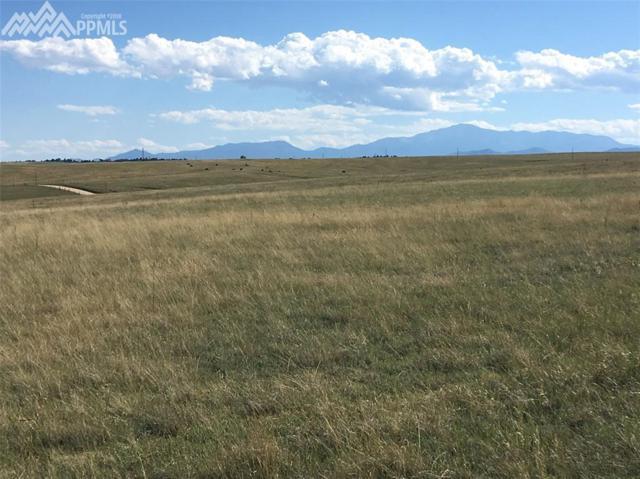 TBD Brown Road, Colorado Springs, CO 80908 (#5800952) :: The Hunstiger Team